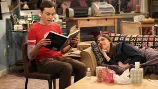 The Big Bang Theory: The Fish Guts Displacement