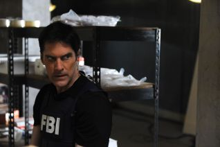 Criminal Minds: Brothers Hotchner