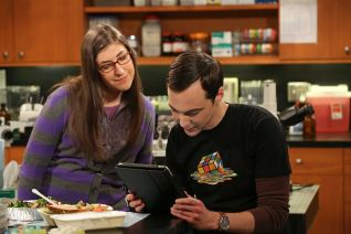 The Big Bang Theory: The Extract Obliteration