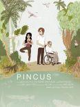 Pincus