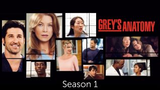 Grey's Anatomy: Season 01