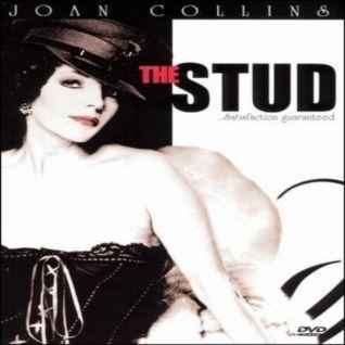 The Stud