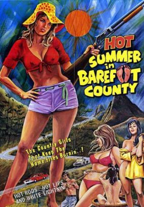 Hot Summer in Barefoot County