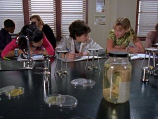 Lizzie McGuire: Jack of All Trades