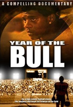 Year of the Bull