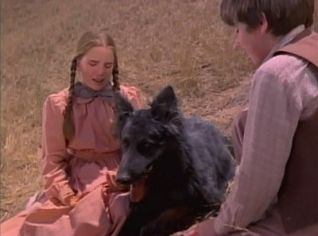 Little House on the Prairie: The Wolves