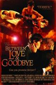 Between Love and Goodbye