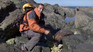 Man vs. Wild: Canadian Rockies