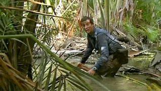 Man vs. Wild: Vietnam