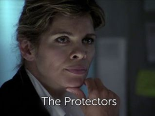 The Protectors [TV Series]