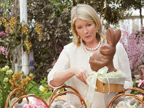 a biography of martha stewart Entertainment enthusiasts, everyday cooks, and gourmet gurus across the globe, at one point or another have copped the style of one lifestyle expert - martha stewart.