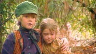 Faerie Tale Theatre: Hansel and Gretel