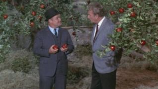 Green Acres: Apple Picking Time
