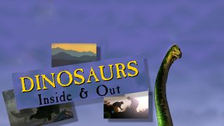 Dinosaurs: Inside and Out [TV Documentary Series]
