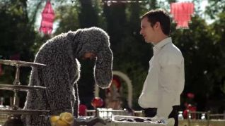 Wilfred: Anger
