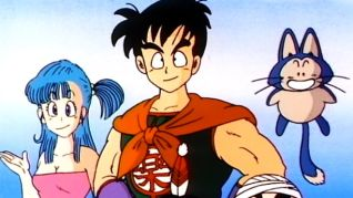 DragonBall: True Colors of the Masked Man