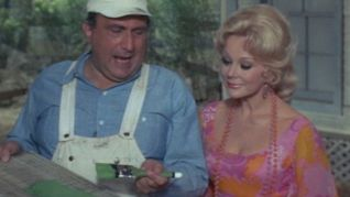 Green Acres: The Free Paint Job