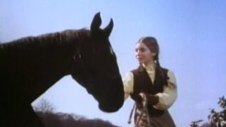 The Adventures of Black Beauty: The Pit Pony