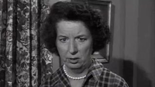 Dennis the Menace: Jane Butterfield Says