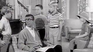 Dennis the Menace: My Four Boys