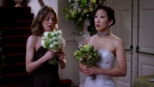 Grey's Anatomy: Didn't We Almost Have it All