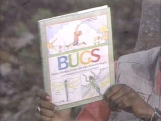 Reading Rainbow: Bugs