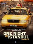 One Night in Istanbul