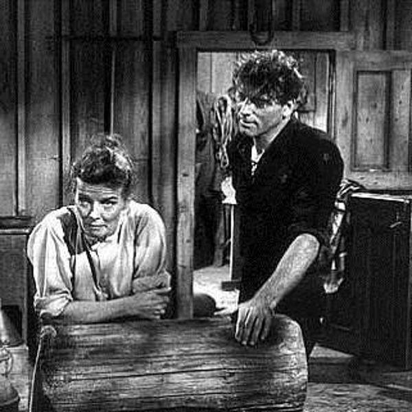 the rainmaker 1956 joseph anthony review allmovie