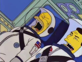 The Simpsons: Deep Space Homer