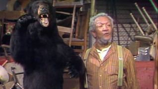 Sanford and Son: Blood Is Thicker Than Junk