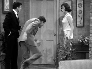 The Dick Van Dyke Show: The Lady and the Tiger and the Lawyer