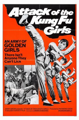 Attack of the Kung Fu Girls