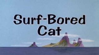 Surf-Bored Cat