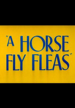 A Horsefly Fleas