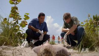 The Glades: Beached