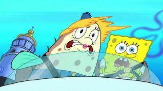 SpongeBob SquarePants: Bumper to Bumper