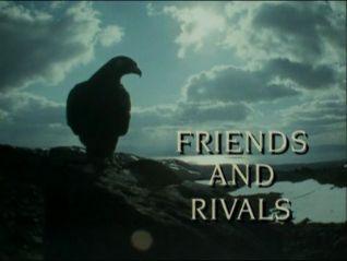 Trials of Life: Friends & Rivals