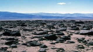 Nature: Life in Death Valley