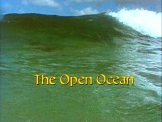 Living Planet Vol. 3: The Open Ocean
