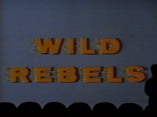 Mystery Science Theater 3000: Wild Rebels