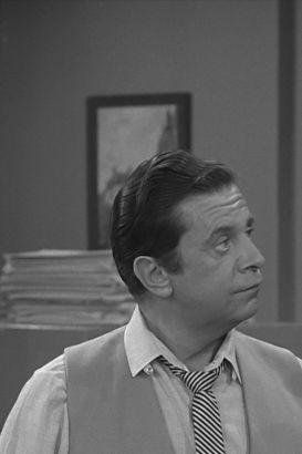 The Dick Van Dyke Show: Viva Petrie