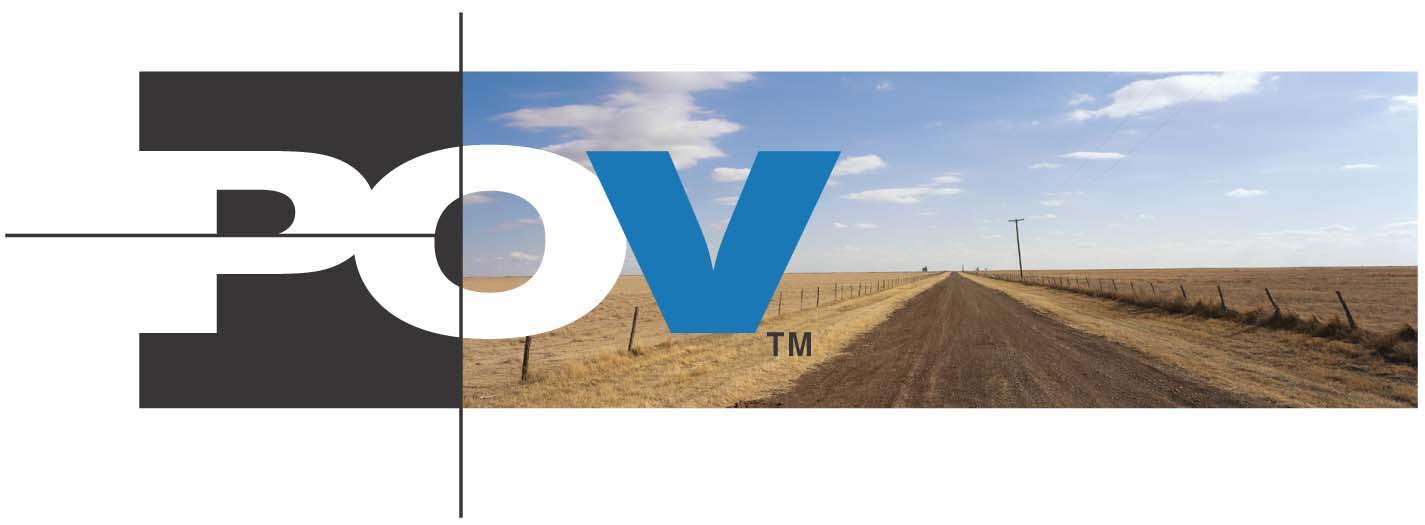 P.O.V. [TV Documentary Series]