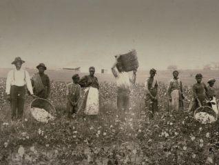 Underground Railroad: The William Still Story