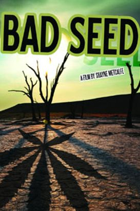 Bad Seed: A Tale of Mischief, Magic, and Medical Marijuana