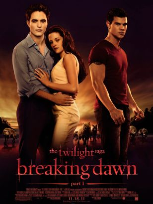 The twilight saga. Breaking dawn. Part 1 [videorecording]