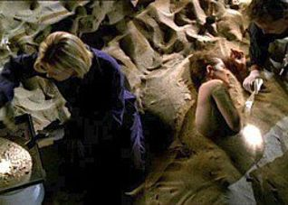 CSI: Crime Scene Investigation: Slaves of Las Vegas