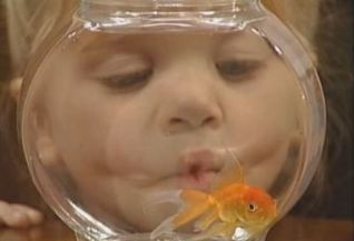 Full House: A Fish Called Martin