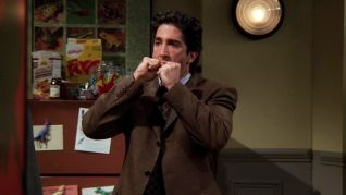 Friends: The One with Ross's Sandwich