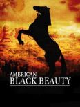 American Black Beauty