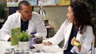 Grey's Anatomy: The End Is the Beginning is the End